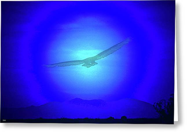 Birds In Flight At Night Greeting Cards - Desert Nights Greeting Card by Debra     Vatalaro
