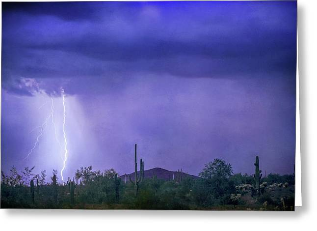 Desert Rain Greeting Card by James BO Insogna
