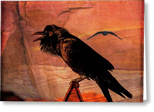 Desert Raven Greeting Card by Mary Hone