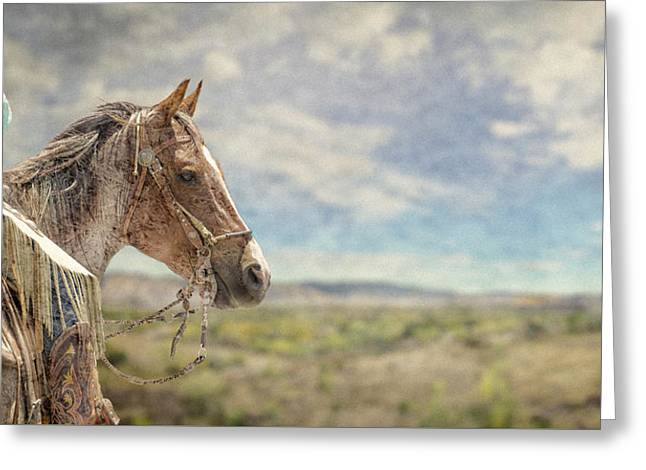 Desert Ride Greeting Card by Rick Mosher
