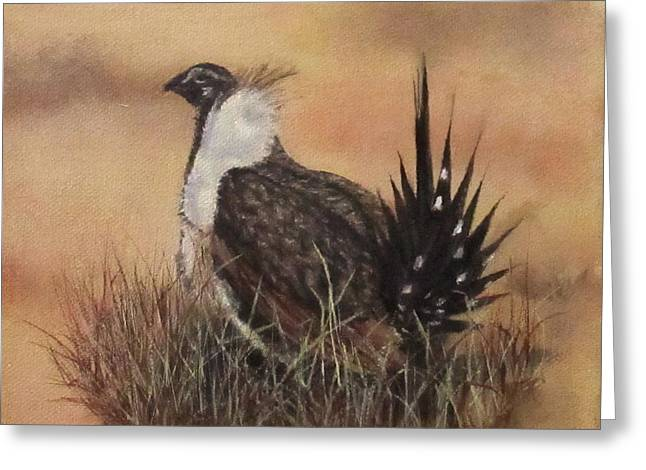 Desert Sage Grouse Greeting Card by Roseann Gilmore