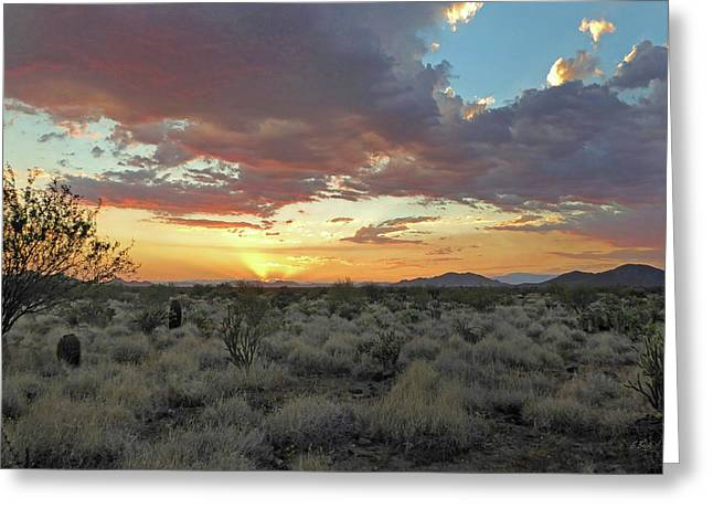 Desert Skies Greeting Card