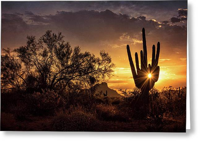 Greeting Card featuring the photograph Desert Skylight  by Saija Lehtonen