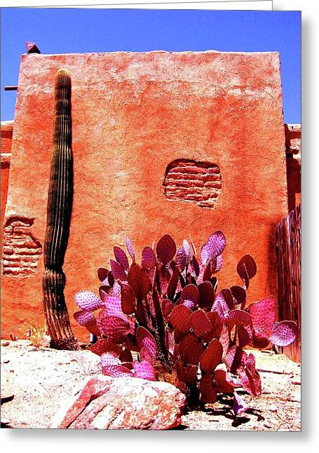 Desert Solace Greeting Card