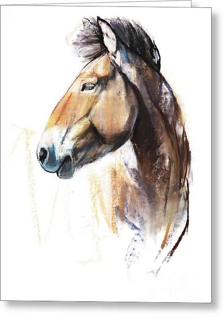 Desert Spirit Przewalski Greeting Card by Mark Adlington