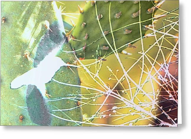 Desert Spring Greeting Card by Kathy Bassett