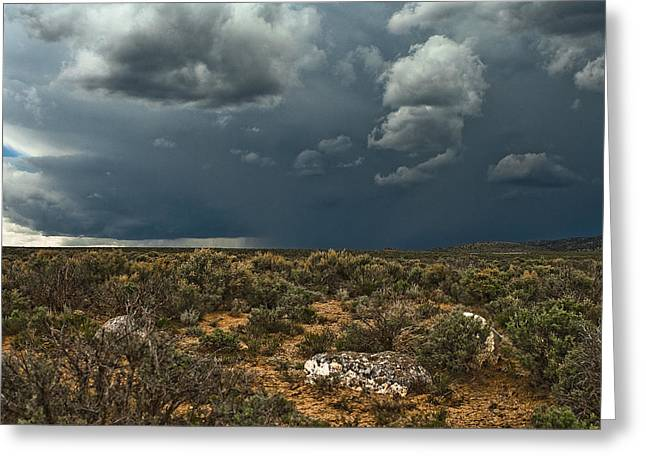 Greeting Card featuring the photograph Desert Storm 2 by Lou  Novick