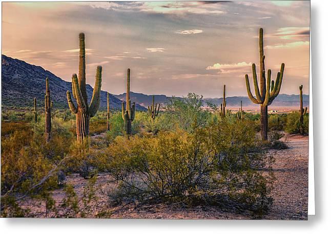 Desert Sun Setting - San Tan - Arizona Greeting Card
