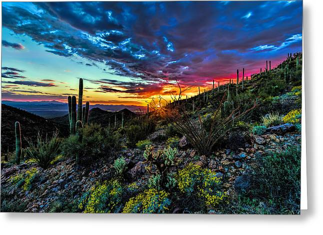 Desert Sunset Hdr 01 Greeting Card