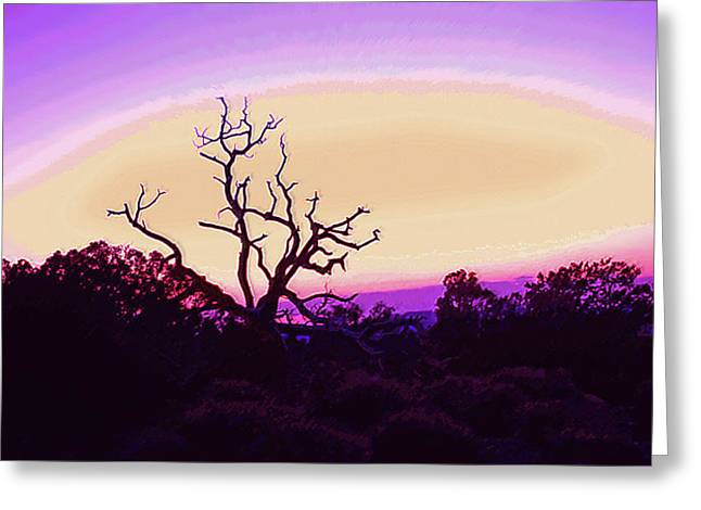 Desert Sunset With Silhouetted Tree 2 Greeting Card by Steve Ohlsen