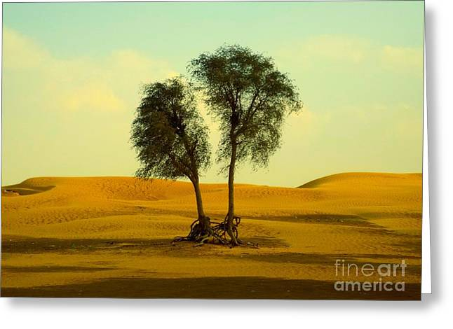 Desert Trees Greeting Card