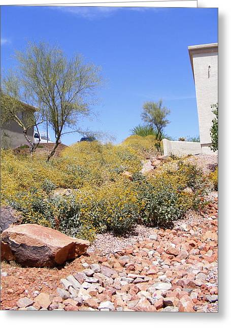 Desert Yard Greeting Card