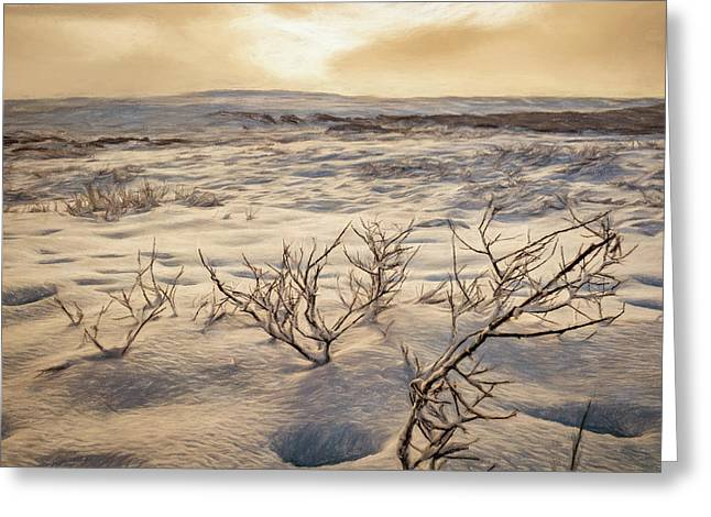 Desolate Landscape Greeting Card by Maria Coulson