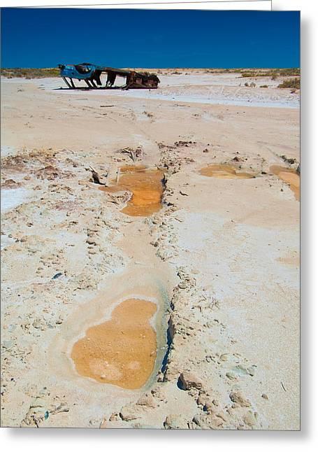Desolate Greeting Card by Tim Nichols