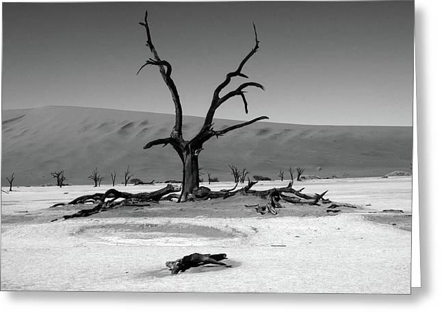 Namib Naukluft National Park  Greeting Card