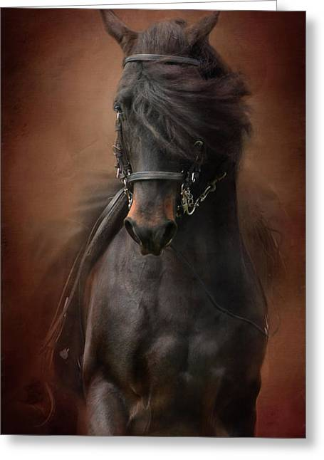 Desparate' IIi Greeting Card by Kathy Russell