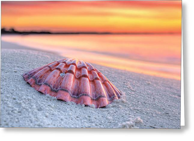 Destin Mornings Greeting Card by JC Findley