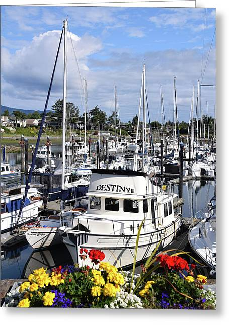 Destiny Sidney Harbor British Columbia Canada Greeting Card by Barbara Snyder