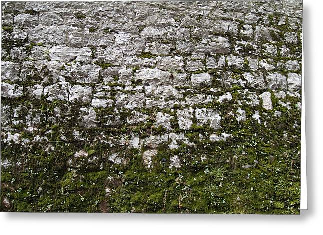 Detailed View Of The Stone Wall Greeting Card
