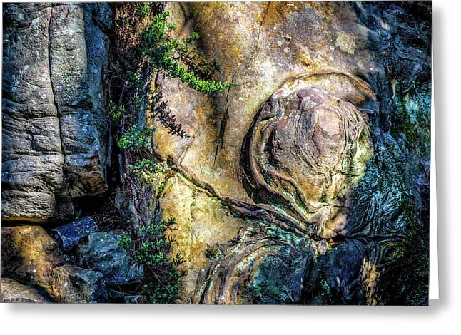 Greeting Card featuring the photograph Details In The Rock by James Barber