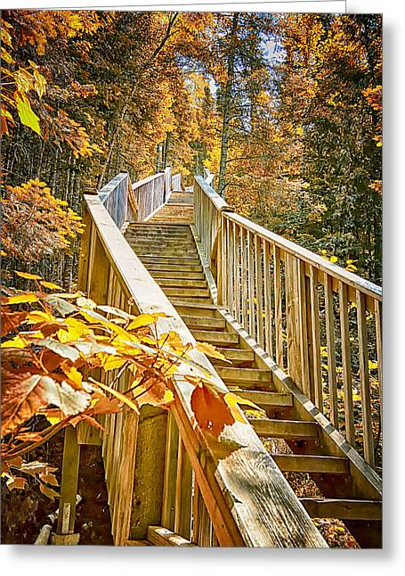 Devil's Kettle Stairway Greeting Card