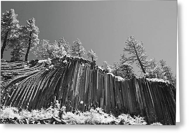 Infrared Greeting Cards - Devils Postpile - Frozen columns of lava Greeting Card by Christine Till