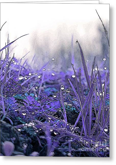Dew Drops Magic Two Greeting Card by Robert Ball