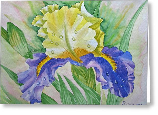 Dew Drops Upon Iris.2007 Greeting Card by Natalia Piacheva