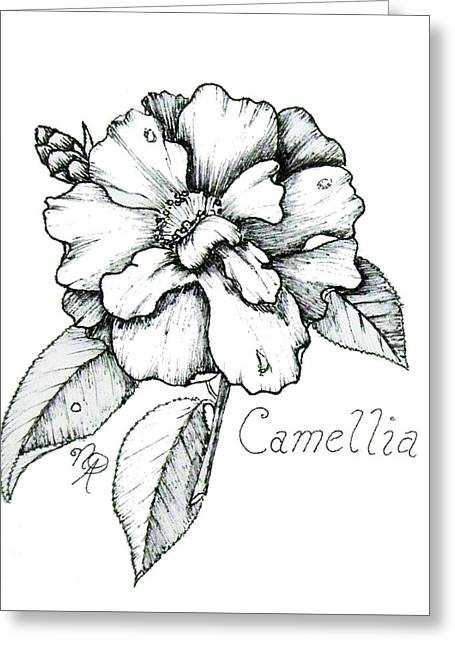 Dew Kissed Camellia Greeting Card