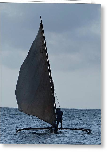 Dhow Wooden Boats In Sail Greeting Card