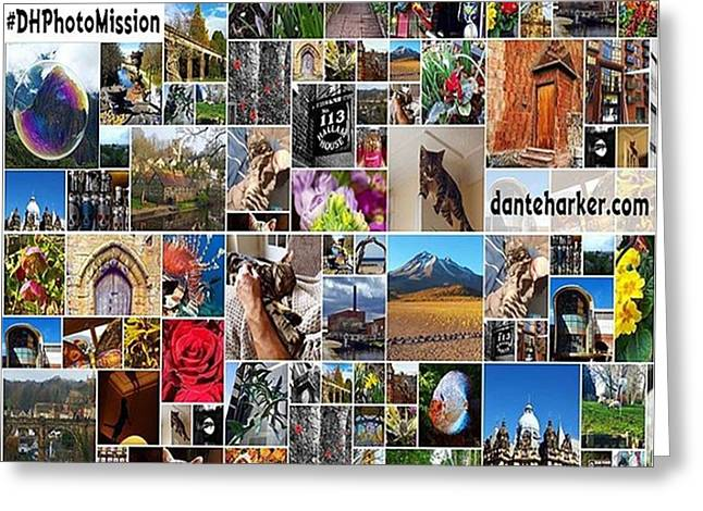 #dhphotomission My New #photomission Greeting Card by Dante Harker