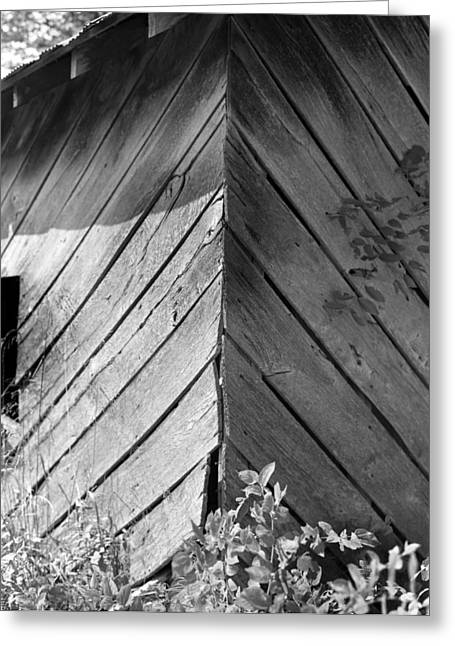 Diagonals Greeting Card by Curtis J Neeley Jr