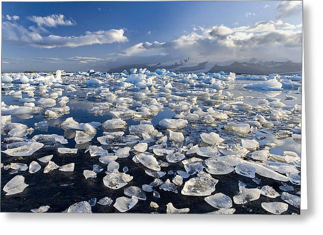 Diamonds Sea Greeting Card by Joan Gil Raga