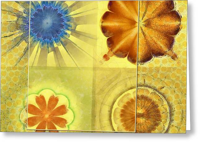 Didactic Rainbow Flower  Id 16165-120332-39891 Greeting Card by S Lurk