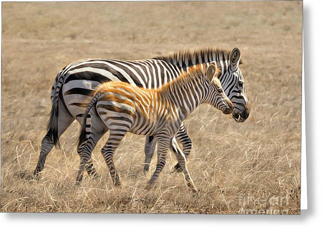 Different Stripes Greeting Card by Alice Cahill