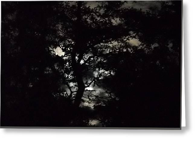 Greeting Card featuring the painting Digital Fine Art Work Full Moon Trees Gulf Coast Florida by G Linsenmayer