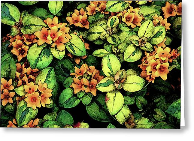 Digital Painting Quilted Garden Flowers 2563 Dp_2 Greeting Card