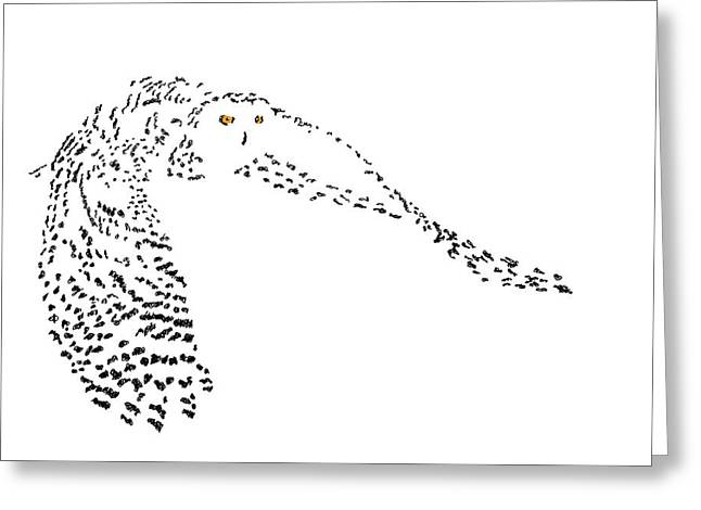 Digital Scribble - Snowy Owl II Greeting Card