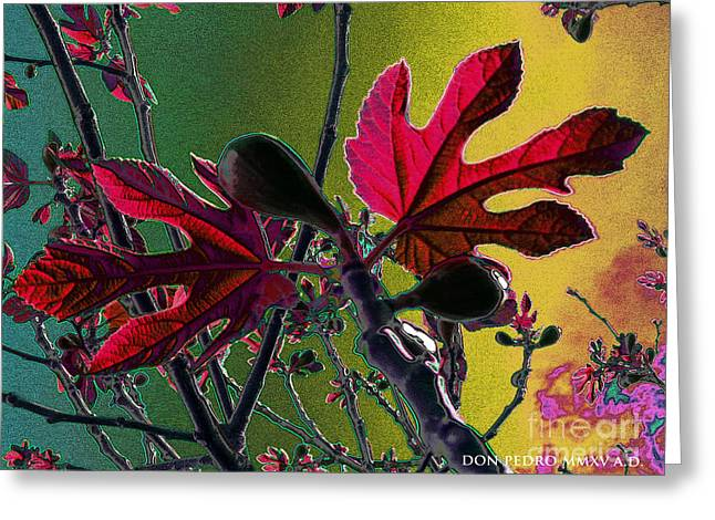 Figtree Greeting Cards - DigitalliaH Im Figtree Hojah 2 Greeting Card by Don Pedro De Gracia