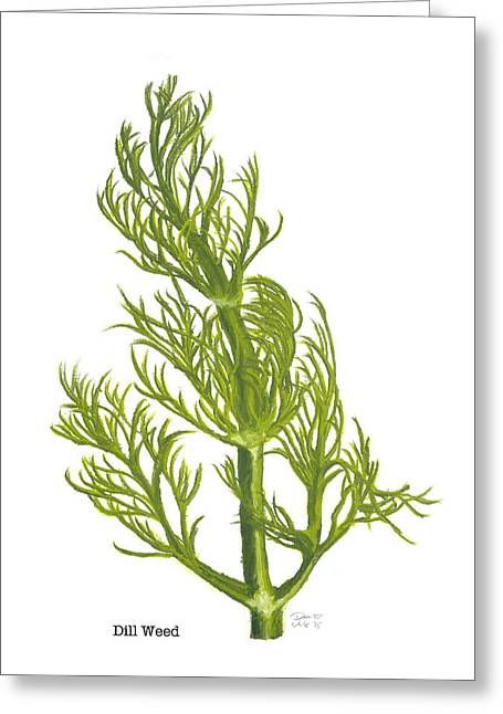 Dill Plant Greeting Card