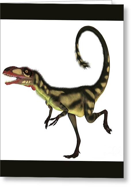 Dilong Dinosaur Profile Greeting Card by Corey Ford