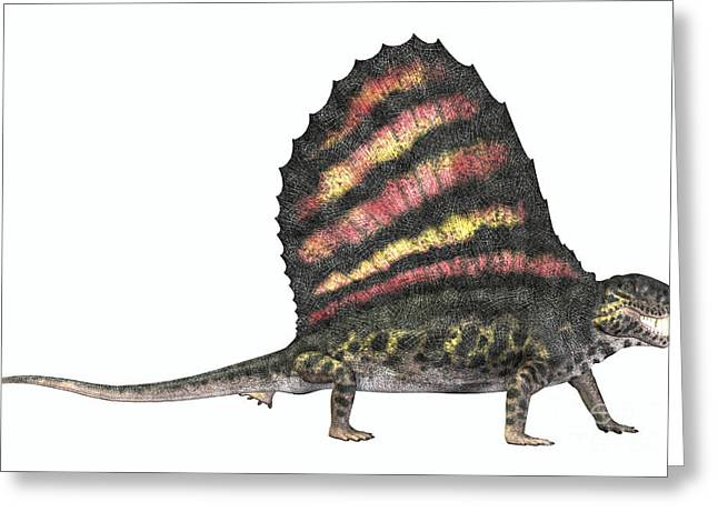Dimetrodon Reptile From The Permian Greeting Card by Corey Ford