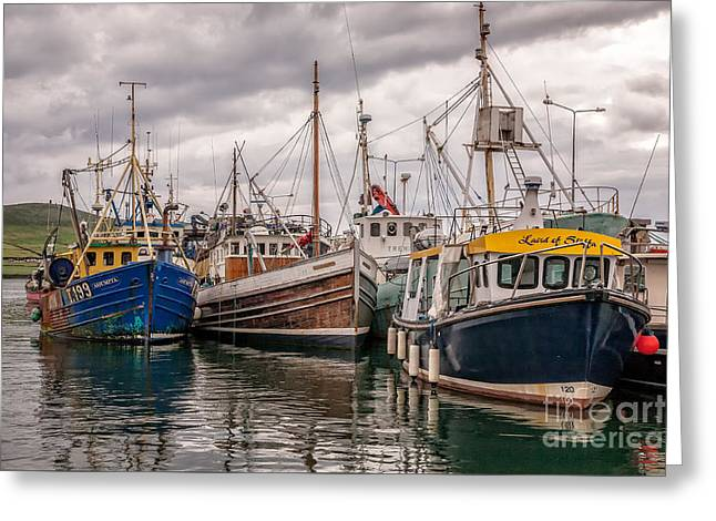 Dingle Harbour Greeting Card