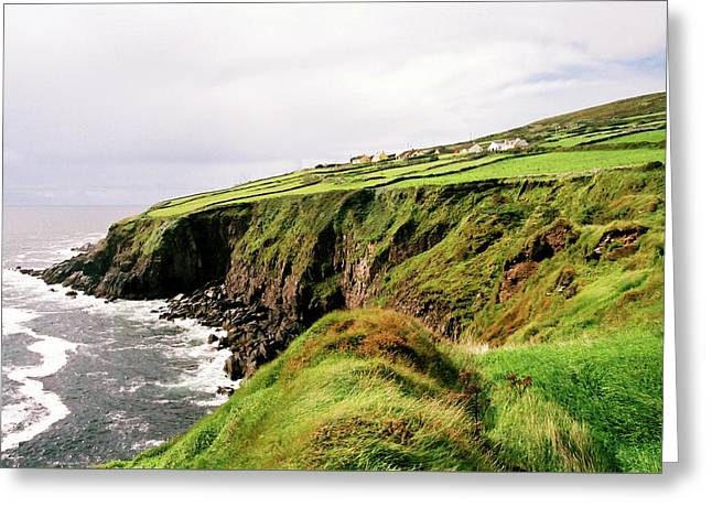 Dingle Pennisula Greeting Card by Bruce