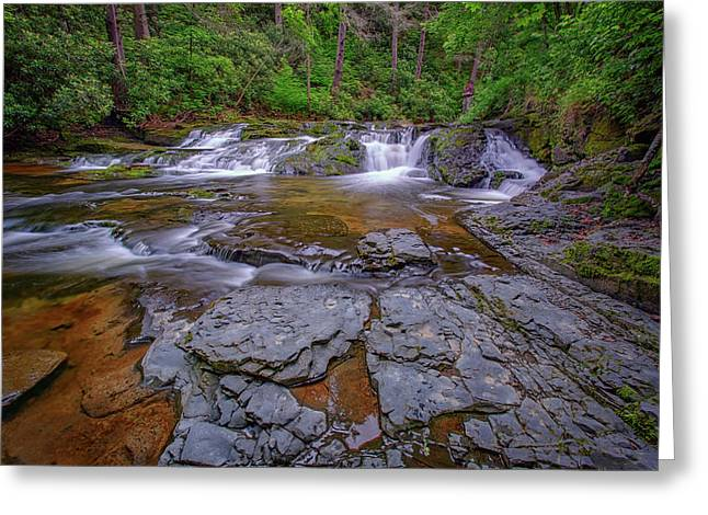 Dingmans Creek II Greeting Card by Rick Berk