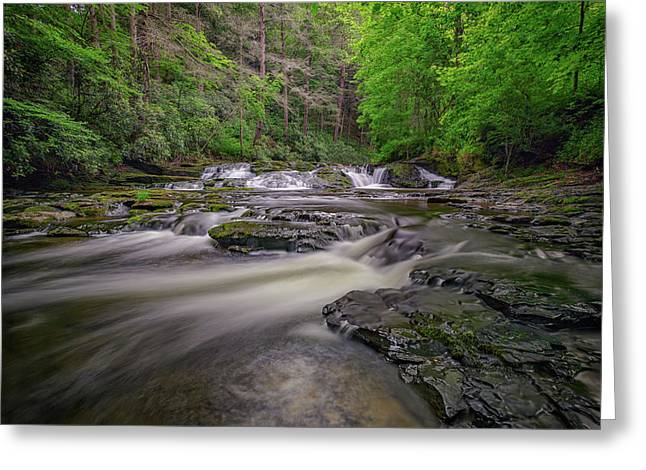 Dingmans Creek IIi Greeting Card by Rick Berk