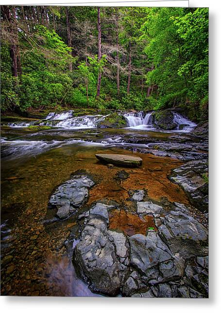 Dingmans Creek Greeting Card by Rick Berk