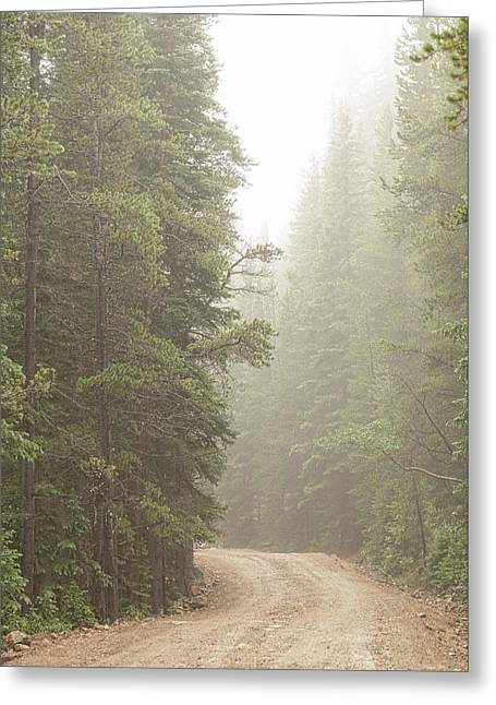 Greeting Card featuring the photograph Dirt Road Challenge Into The Mist by James BO Insogna
