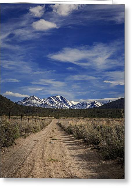 Dirt Road View Greeting Card by Cat Connor