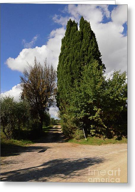 Dirt Roads And Pathways In Tuscany Italy Greeting Card by DejaVu Designs